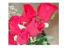 Çiçekler ve sevgiler