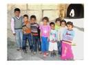 Harran'ın çocukları...
