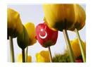 """""""Hiç Türk'e Benzemiyorsunuz"""" Çok teşekkür ederim !!!"""