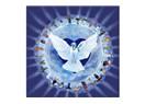 Milli Birlik İç Barış (RTE'nin Yapması gereken!)