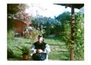 Şİle'de Bahar