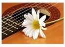 Kadın… şarkı ve çiçek