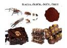 Fare leşli, böcekli kakao işlenip bize yedirilmiş! Yapanın yanına kâr kalmış!