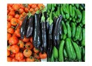 Domates, Biber, Patlıcan Enflasyonu