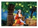 Newton'ın kafasına gerçekten elma düştü mü? Peki o elma düşüren ağaca ne oldu?