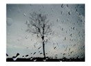 Yağmurda Sen