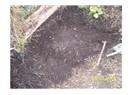 Toprağa organik özelliklerinin kazandırılması.