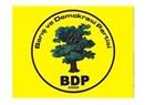 """BDP tam anlamıyla bir """"sol"""" parti"""