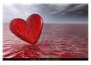 Ana yüreği.