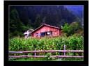 Köy anılarım (!)