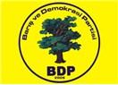 BDP'nin bedelliye bakışı