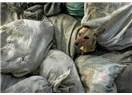 Durdurun şu cinayetleri: Ukrayna hayvan katliamı!