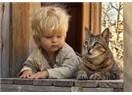 Hayvanlar: İnsan ırkının yeryüzü komşuları