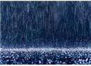Yağmur yağıyordu, felsefe yağmurda yürüyordu
