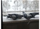 Kar yağdı ondan...