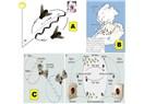 Dom - eki- 9: Arılarda demokrasi