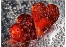 Aşk Dört Mevsim gibidir