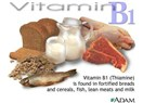 B kompleks vitaminleri - B1 vitamini / ''Beslenmenin  Diyalektiği''  (15)