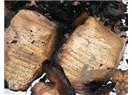 Kur'an'ı yakan alevler içinde yanan gelecek