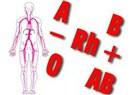 Kan gurubu ne anlam taşır…