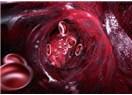 Kanımız kırmızı iken damarlarımız neden mavi görünür?