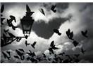 Sevda kuşun kanadında ürkütürsen tutamazsın