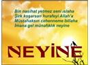 Neyine