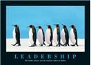Lider olmak kolay değil!