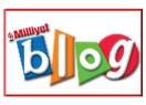 Blog yazarlığının geleceği...
