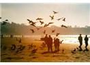 Bir çift güvercin havalansa, yanık yanık koksa karanfil…