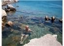 Rubai 40: Çeşme termal deniz