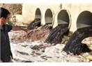 Ergene Nehri ve Çevre Kirliliği