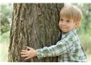 Otlar ağaca ne yapar?