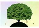Kelime Ağacı, sessizlik ve Medyatizma