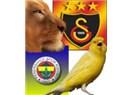 Türkiye'nin Manchester United'ı hangisi olacak? Galatasaray mı, Fenerbahçe mi?
