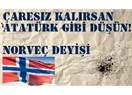 Çaresiz kalırsan Atatürk gibi düşün
