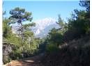 Dağa Kaçtım~~Kemalpaşa - Dereköy Mahmut Dağı yürüyüşü
