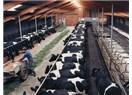 Tarım ve hayvancılıkla ilgili proje önerileri