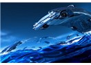 Balıklarının birbirlerine çarpmaması, araba tasarımcılarına ilham kaynağı oluyor.