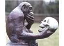 Evrim teorisi hakkında