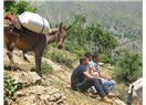 Hollandalı bir gazetecinin Türkiye belgeselleri