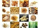 Türk Tarımı üreten bir Tarım mı yoksa tüketen bir Tarım mı ? (Game of Seed)