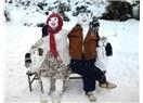 Kardan adamlar