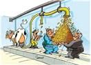 Okul sütü projesinde üreticilere darbe