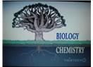 Evrim ve hayat dallarının birbirine bağlanması - Hayat ağacı 5