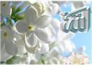 Allah inancı ve kader