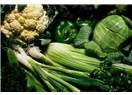 Alkali Beslenme Sanatı (II) / Sağlıklı bir yaşamın kılavuzu / ''Beslenmenin Diyalektiği' (40)''
