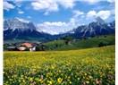 Kıbrıs'ta bahar