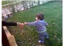 Uzat elini sevgiye