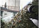 Geri dönüşüm işi Ukrayna'da ne kadar karlı?